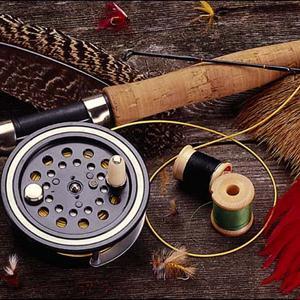 Охотничьи и рыболовные магазины Красного